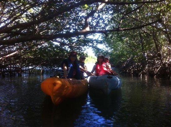 Motorized Kayak Adventures: Exploring the lagoon