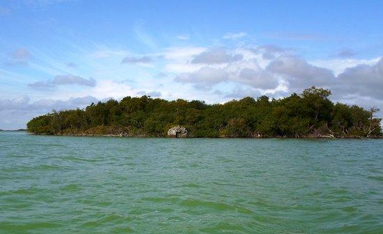 Cesiak Tours: Sian Ka'an Biosphere