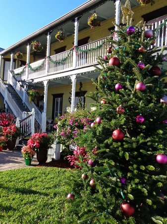 Bayfront Marin House Historic Inn : Christmas cheer :)