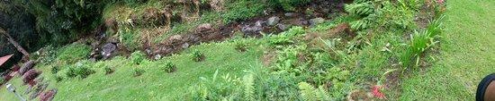 Las Orquideas Bed & Breakfast: River