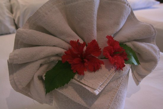 Hotel Cabanas Tulum : The maid left towel art on the bed