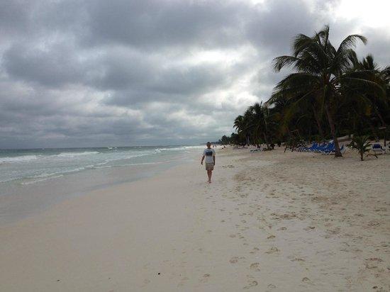 Cabanas Tulum : Beach walk- blue chairs are Cabana Tulum