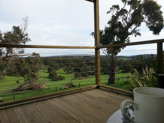 Wildwood Valley: View from porch in Honeybee