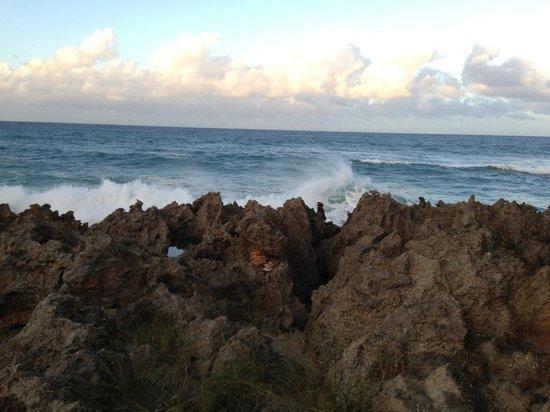Natura Cabana Boutique Hotel & Spa: amazing views