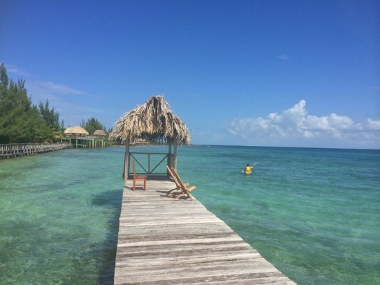 Thatch Caye Resort : The view from the T-Dock