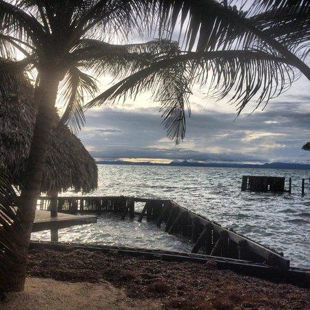 Thatch Caye Resort : View from dinner