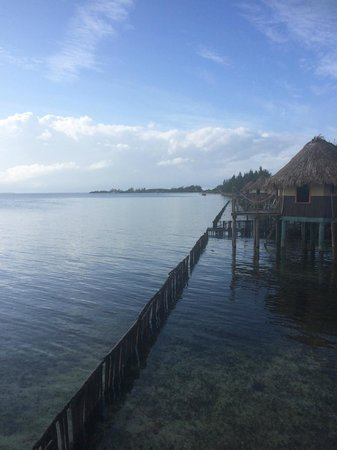 Thatch Caye Resort : View from my Cabana