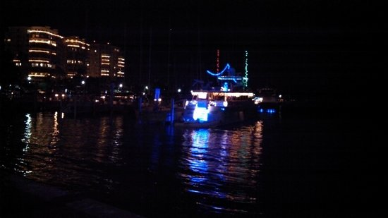 The Vinoy Renaissance St. Petersburg Resort & Golf Club: Christmas Lights on Boat - Vinoy's Marina