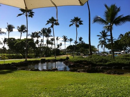 Mauna Lani Bay Hotel & Bungalows: view from the breakfast / lunch terrace