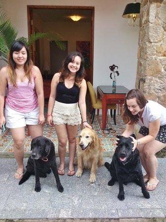 Pousada Pontal Gardens: Os cachorros dos donos da pousada são fofos dmais!!! *-*