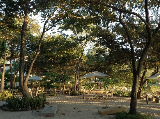 The Green House Restaurant: Beautiful outdoor dining.