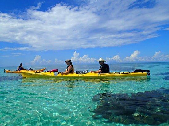 Glovers Reef Basecamp : Glover's Reef Kayaking