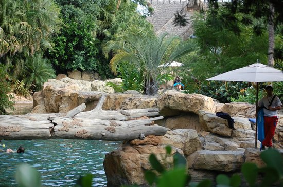 Discovery Cove: I think this was a section of the lazy river...not too sure though