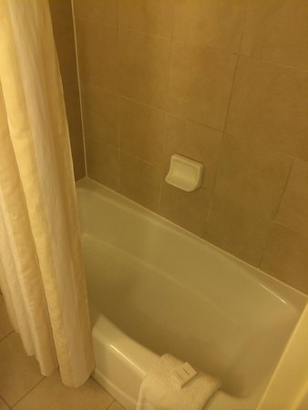 Hilton Garden Inn Palm Beach Gardens: Small bath