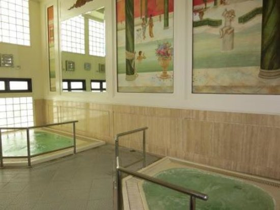 The Emerald Hotel: jacuzzi in gym