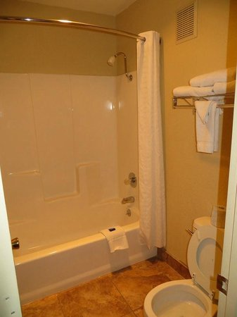 Best Western Pine Springs Inn: bathroom 114