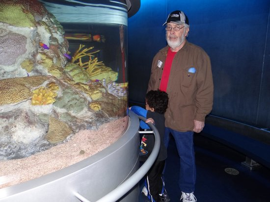 National Mississippi River Museum & Aquarium: One of the aquariums