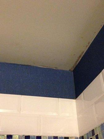 Kimpton Solamar Hotel: bathroom ceiling