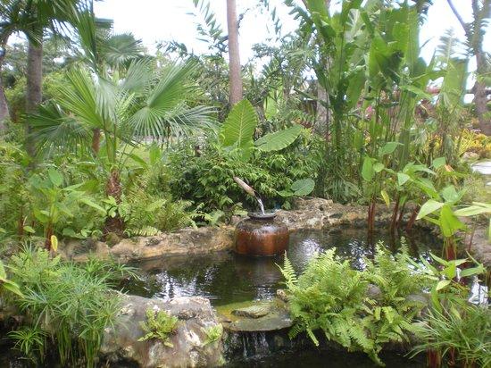 Shangri-La's Mactan Resort & Spa: Chi Spa Garden