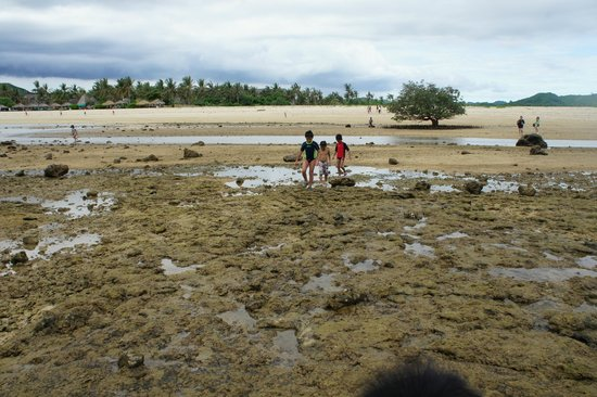 Novotel Lombok: Low Tide