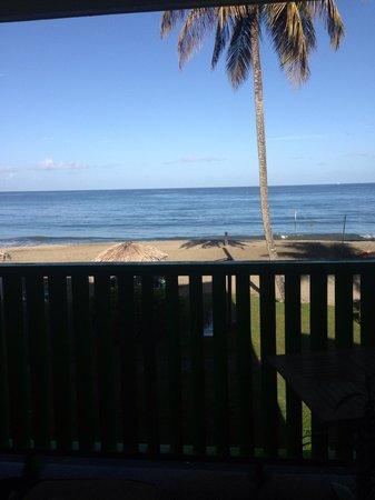 Turtle Beach by Rex Resorts: View!