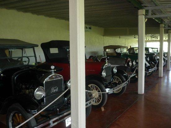 Bouza Bodega Boutique: Exposição de carros antigos