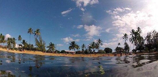 Kiahuna Plantation Resort : Beach