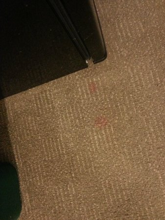 Country Inn & Suites by Radisson, Jackson-Airport, MS: Carpet Stains again