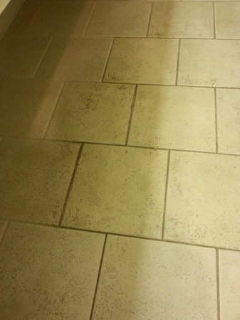 Country Inn & Suites By Carlson, Jackson-Airport : Beautiful tile....not!