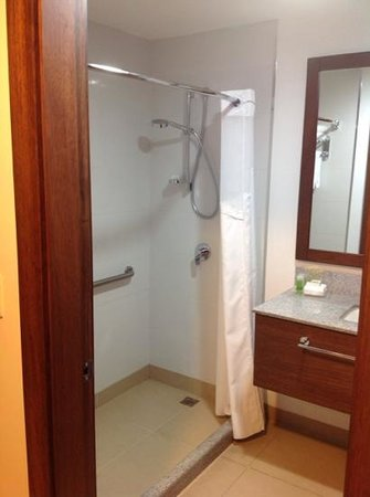 Holiday Inn Guayaquil Airport : shower