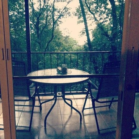 Tinamou Cottages : View of Great Tinamou Cottage veranda