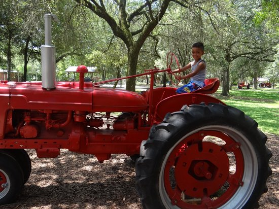 Green Meadows Petting Farm: My son playing on a tractor