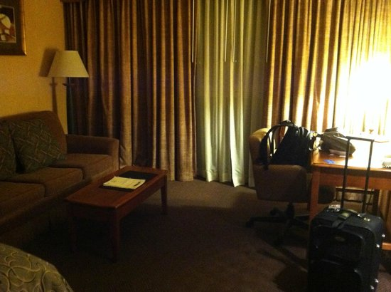 Capitol Plaza Hotel Topeka : pull out couch which was nice to spread out my office paperwork
