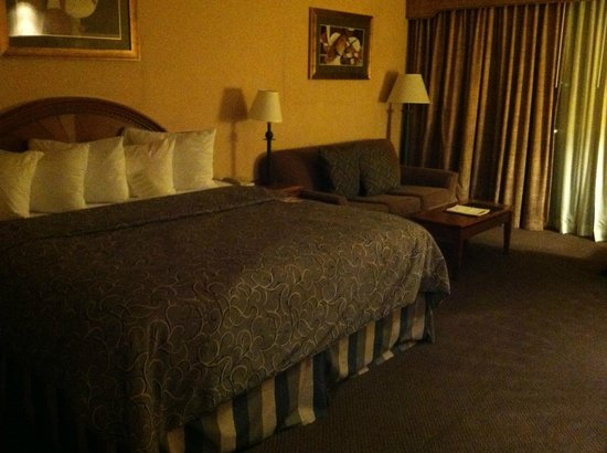 Capitol Plaza Hotel Topeka : very clean and comfortable bed.