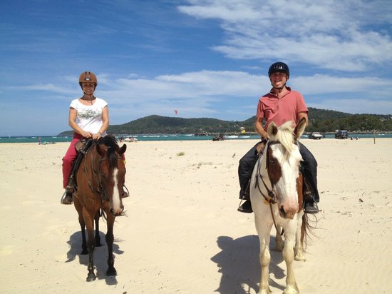 Equathon Horse Riding Tours - Day Tours: Noosa in the background
