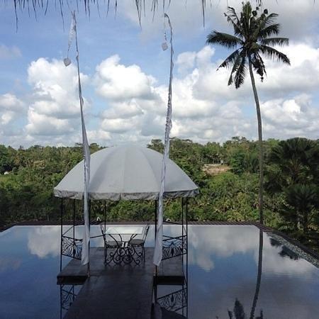 Kupu Kupu Barong Villas and Tree Spa: near lobby