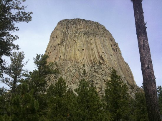 Devils Tower National Monument: Up close