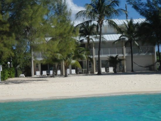 White Sands Beach Condominiums: Palm trees, lounge chairs