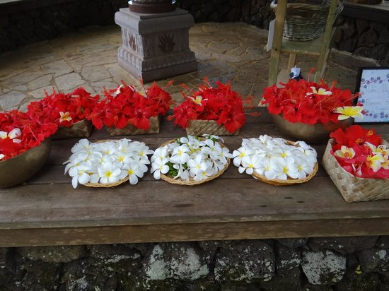 Kauai's Hindu Monastery: Flowers for offerings