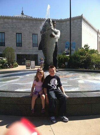 Shedd Aquarium: the kids