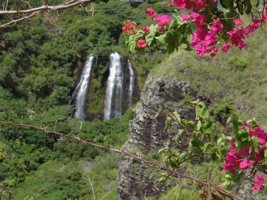 Opaekaa Falls: Beautiful sight