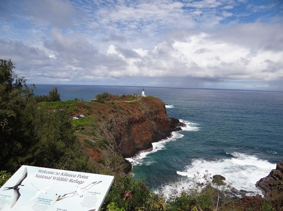 Kilauea Point National Wildlife Refuge: The outlook point