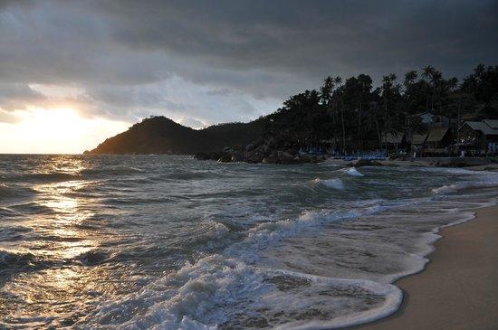 Panviman Resort - Koh Pha Ngan: wonderful beach