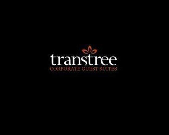 Transtree@SPC House: transtree logo
