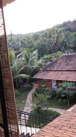Arya Ayurvedic Panchakarma Centre Gokarna : View of the rest of the resort from the room