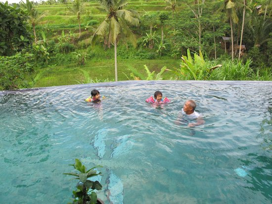 Capung Sakti Villas: hotel pool is the highlight for the kids