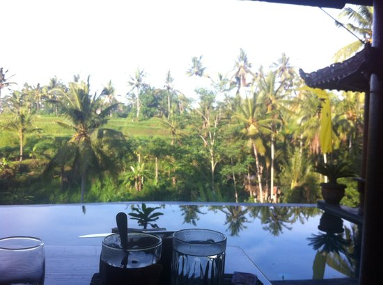 Capung Sakti Villas: Woke up with a view!