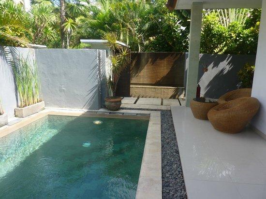 Puri Saron Seminyak : Pool at the Villa