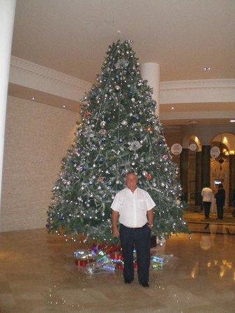 Calista Luxury Resort: One of the Christmas Trees