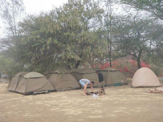 Meserani Snake Park: Meserani campsite